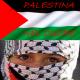 Palestina: il voto all'ONU e le reazioni di Israele